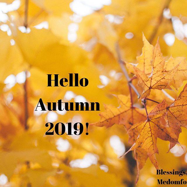New season. New adventures 💖🍂 . . . #autumn #orange #leaves #autumnleaves #graciouscreativity