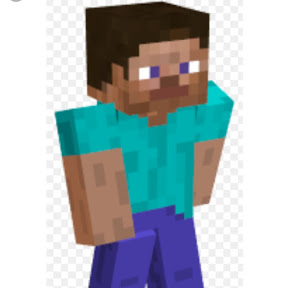Roblox and Minecraft Gaming