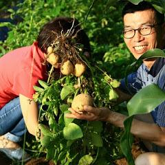 홍천그루터기농원