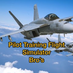 Pilot Training Flight Simulator Bro's