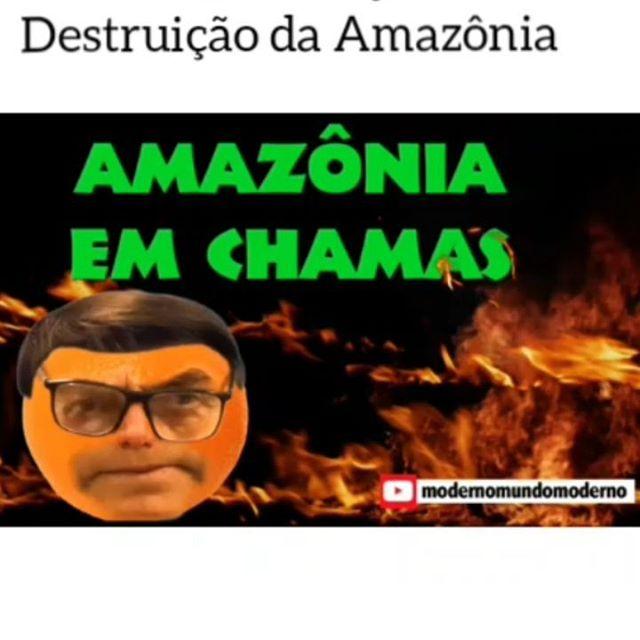 Amazônia pegando fogo! O que Bolsonaro tem a ver com isso?