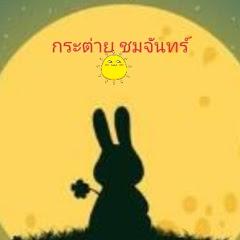 กระต่าย ชมจันทร์