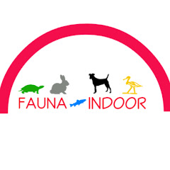 Fauna Indoor