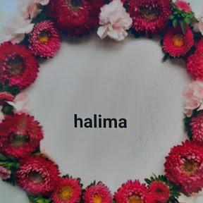 Halima Salon hh