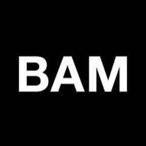 Pz BAM