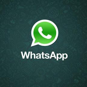 watsapp trendy