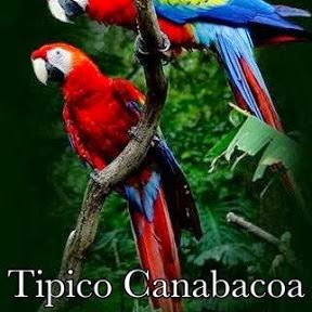 Tipico Canabacoa