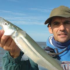 maco pesca