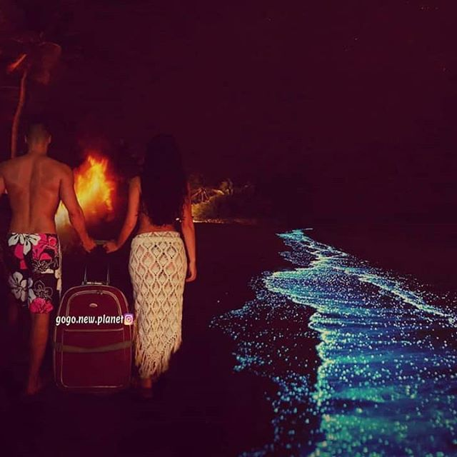 I kad nam se čini da nema puta dalje, svijet se i dalje kreće...🌠🔥🌠🔥🌠 And when there seems to be no way forward, the world is still moving...🌠🔥🌠🔥🌠 #plankton #maldivesislands #nightscene #beachfire #travelcouples #suitcasetravels #beach🌊 #loveyoubaby #myall❤️ #creativetravelcouples