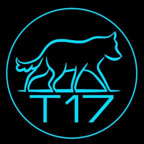 T17_tomba