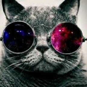 ;3 Galaxy cat ;3