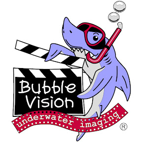 Bubble Vision Stock Footage