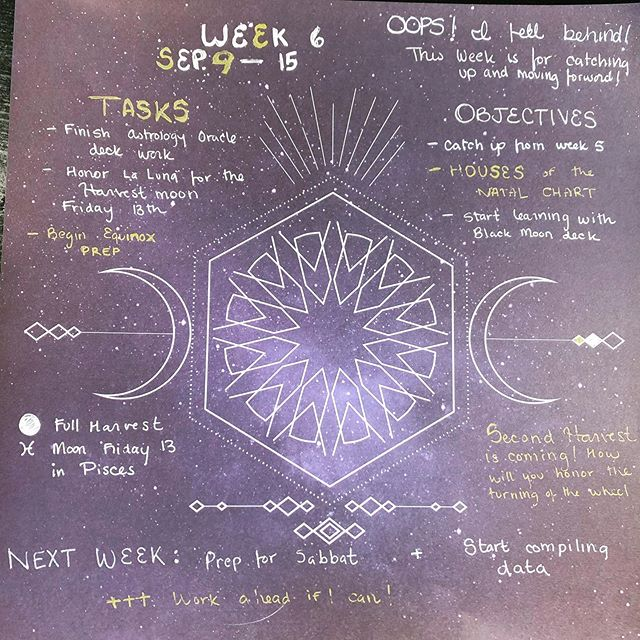 Astrology Study update, it was an extremely busy week for me and my spirituality and self care took a back burner and for that I am bone tired. Gonna try to fill my cup back up this week! #astrology #astrologylover #astrologyposts #witch #witchcraft #witchythings #witchy #witchyvibes #witchesofinstagram
