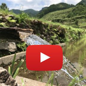 九州の大自然 しらき