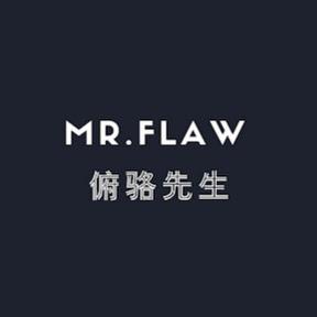 Mr_Flaw