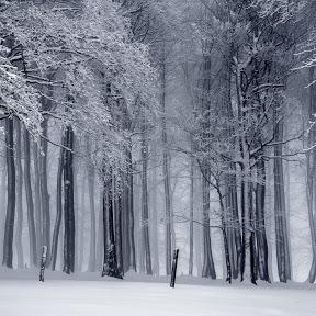 Snow City Tarot