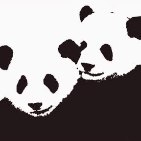 Giant Panda Friends International
