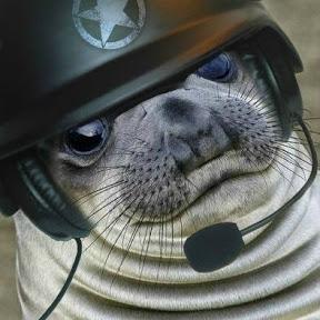 Sealdrop