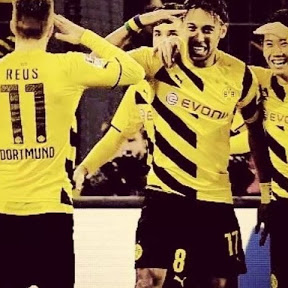 Borussia dortmund br fans