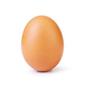 worldrecord Egg
