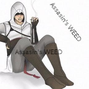 Assasin's WEED