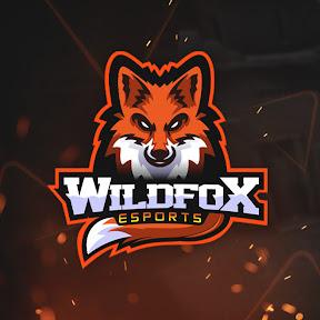 Wild Fox e-Sports