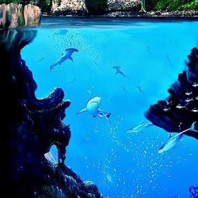 Ocean and Earth Defenders