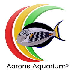 Aarons Aquarium