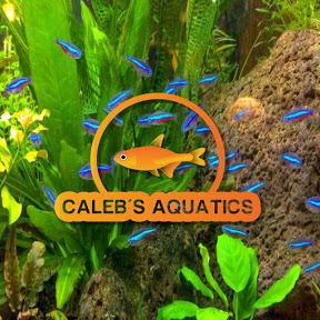 Caleb Aquatics