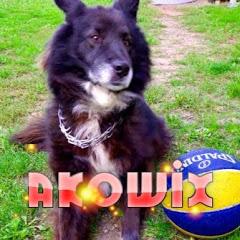 Akowix