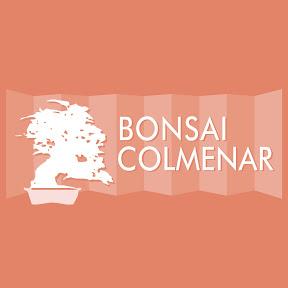 Bonsai Colmenar