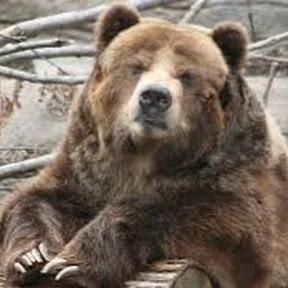 High Plains Bear