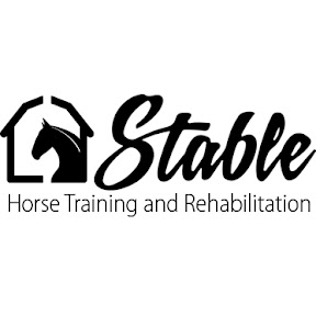 Stable Horse Training