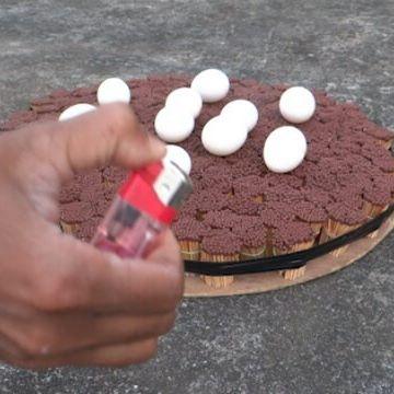 20000 Matches Vs Egg EXPERIMENT  Full Video - www.fridaysae.com YouTube channel - Friday Sae #20000 #Matches #Vs #Egg #EXPERIMENT #versus