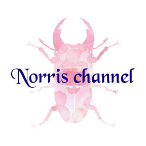 norris channel
