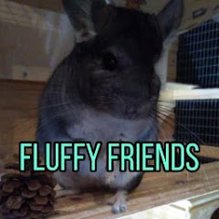 Fluffy_ Friends