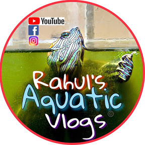 Rahul's aquatic vlogs