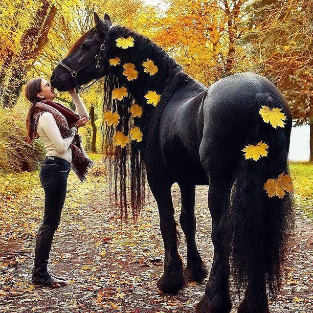 oh autumn...