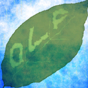 one leaf falls