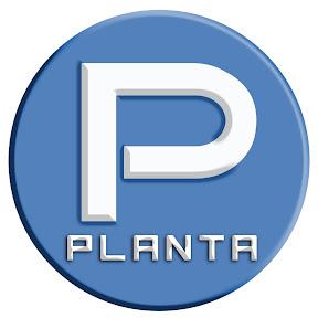 Planta media