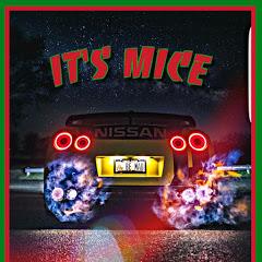 It's Mice