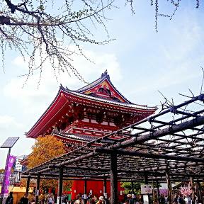 Nihon Diaries