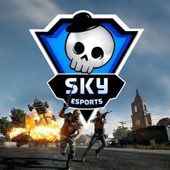 Skyesports