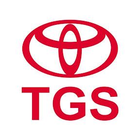 Toyota Gibraltar Stockholdings
