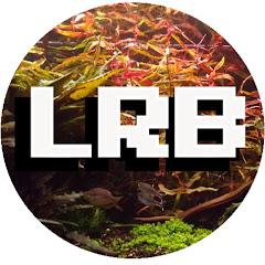 LRB Aquatics - Natural Aquarium Keeping Adventures