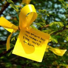세월호참사국민대책회의