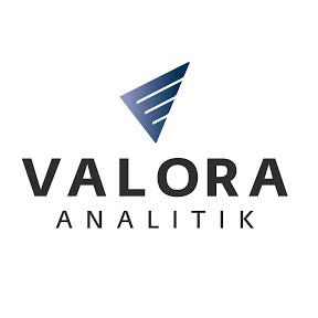 Valora Analitik