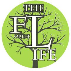 【リアルな森の生活】Forest Life Experience Tour in OKINAWA