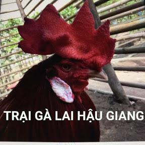 Ngan Ho