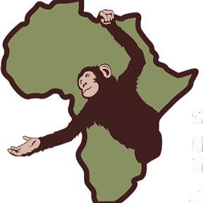 Sanaga-Yong Chimpanzee Rescue